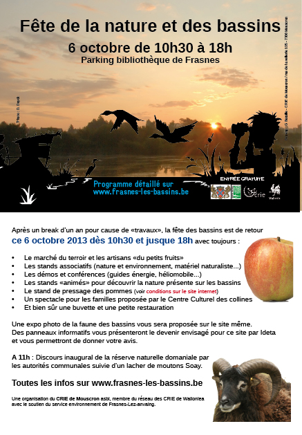 flyer-bassins-2013-web